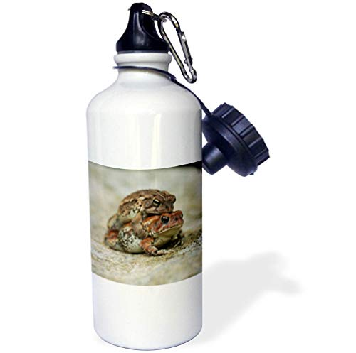 3dRose Stamp City - Amphibian - Macro Photograph of a Toad Getting a Piggy or Toady Back Ride. - Flip Straw 21oz Water Bottle (wb_316768_2)