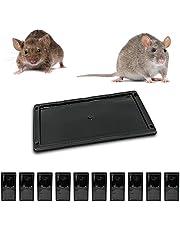 Muispiek met rattenlijm, tegen knaagdieren, dood voor ratten, krachtig, alternatief voor ratten, tegen ratten, ratten, muizen [extra sterk, aroma] (10 klevende platen).