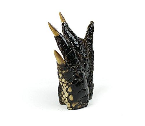 Taxidermy Preserved Alligator Claw 4-6'' | 1 piece
