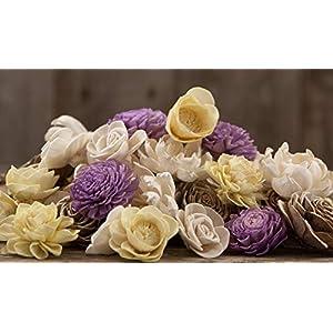 Spring Blossom Sola Craft Flowers – Set of 45