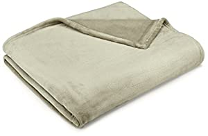 Pinzon Velvet Plush Bed Blanket from Pinzon