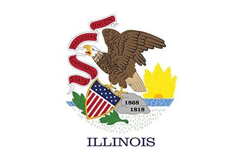 Illinois State Flag Image - 7