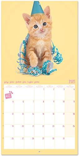 30x30 cm calendario gatti 2021 Grupo Erik CP21008 Calendario 2021 da Muro Studio Pets Kittens 16 mesi