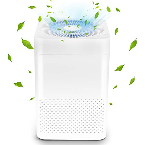 Air Choice True HEPA Air Purifiers, Reduce Pet Dander, Household Odor, Smoke & Dust, Home & Office Used, Sleep Mode & Auto Mode Quiet Operation, Auto Replacement Reminder, Pack of - House Home Office