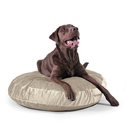 Take Ten Large Luxury Dog Bed – Multiple Colors / Orthopedic Grade Foam / Hair Wipes Off with A Single Swipe