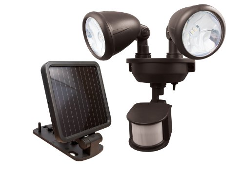 Motion Activated Dual Solar Light