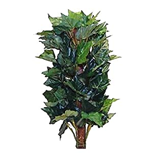 2' English Ivy with Pole Green Greenery Silk Leaf Plant 8679G-24H (un-Potted) 102