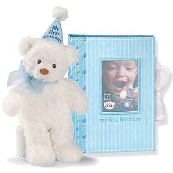 Amazoncom Gund My First Birthday Bear Photo Album Boy Plush