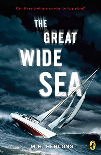 The Great Wide Sea Paperback – May 13, 2010