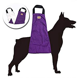 WATFOON Dog Support & Rehabilitation Lift Harnesses Pet Sling for Large dogs Post-Op Surgery of Weak Hind Legs, Helping… Click on image for further info.