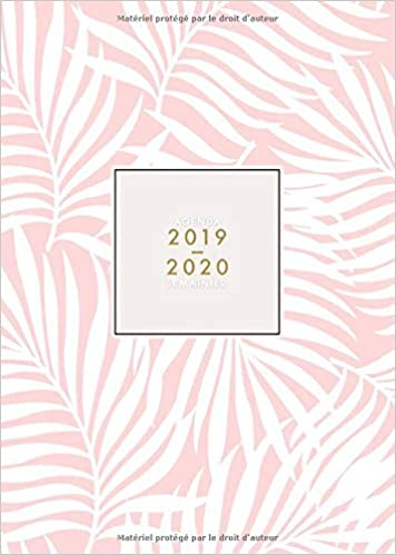 Agenda 2019 2020 Semainier: 18 Mois | Juillet 2019 à ...
