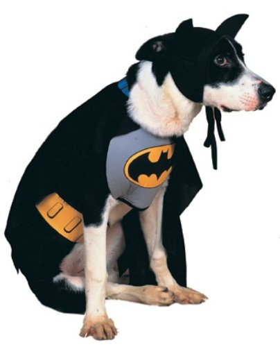 Rubies Batman Dog Costume (Rubies Costume Batman Pet Costume, Medium)