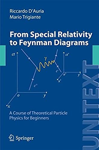 get from special relativity to feynman diagrams a course of pdf rh fdngroup com  a guide to feynman diagrams pdf