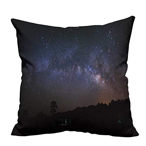 fengruihome Super Soft Short Plush Pillow Cover Panorama Milky Way Tree at PHU hin Rong kla National Park Easy to Wash 26x26 inch(Double-Sided Printing) - Panorama Way Milky