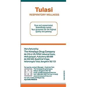 Himalaya Wellness Pure Herbs Tulasi Respirato...