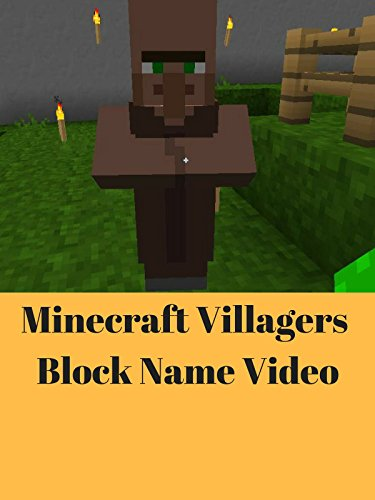 Minecraft Villagers Block Name Video