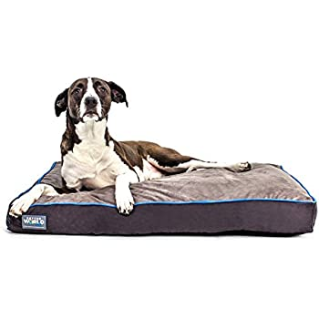 Better World Pets 5-Inch Thick Waterproof Orthopedic Memory Foam Dog Bed with 180 GSM Removable Washable Cover, Medium (36