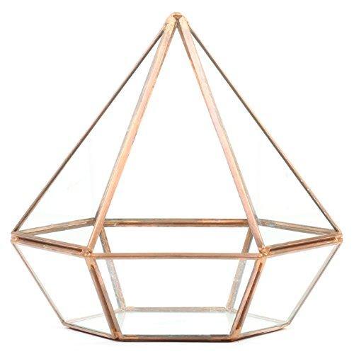 Koyal Wholesale Geometric Terrarium Glass Table Decoration, Planter for Succulents, Cactus, Air Plants, Indoor Plants, Outdoor Plants (Diamond, Copper)