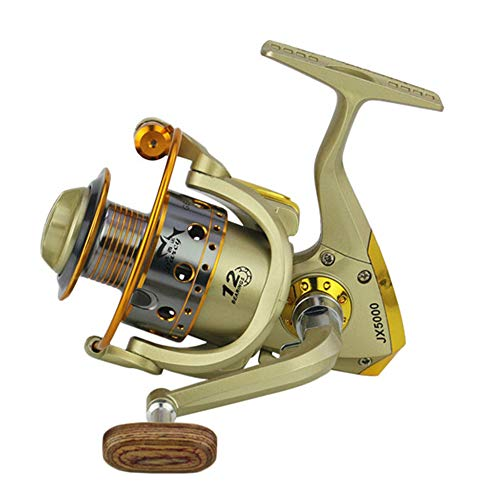 (PIKAqiu33 High Speed 5.5:1 Gear Ratio, Stainless Steel BB for Saltwater or Freshwater,Tournament Ready Magnetic Brakes, Pescaria Molinete JX1000-7000series (JX6000))