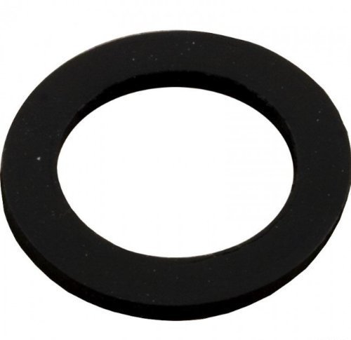 Pentair 154713 Sand Drain Gasket Replacement Sand Dollar Pool and Spa Sand Filter
