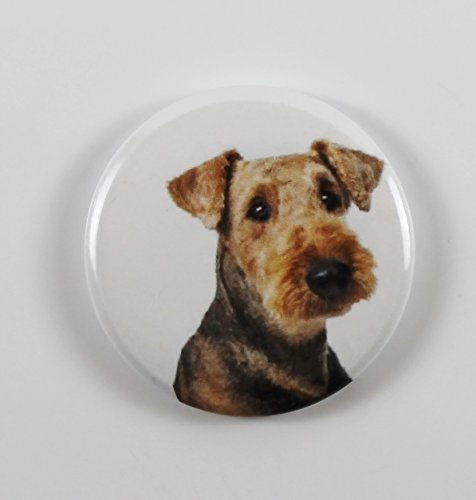 Bust Pin - Airedale Terrier Bust Pin Back Button