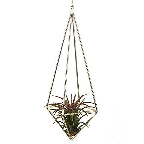 Tillandsia Air Plants Holder Freestanding Hanging Matte Golden Quadrilateral Pyramid Teardrop Shape Geometric Flowers Rack for Wedding Wall Decor 10 inch No (Hexagon Wall Planter)