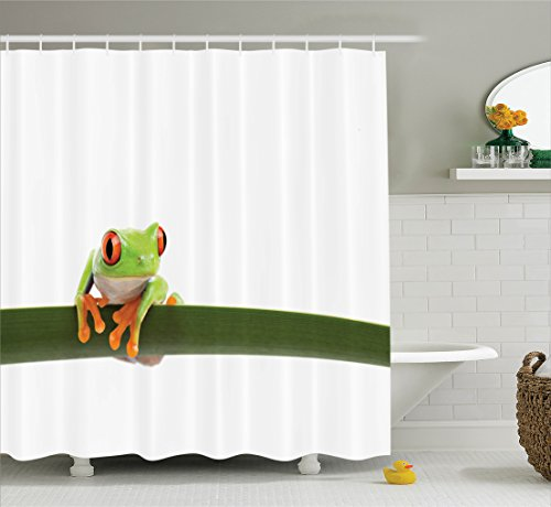 Animal Decor Shower Curtain Set by Ambesonne, Red Eyed Tree Frog Perches on a Long Slim Leaf Tropic
