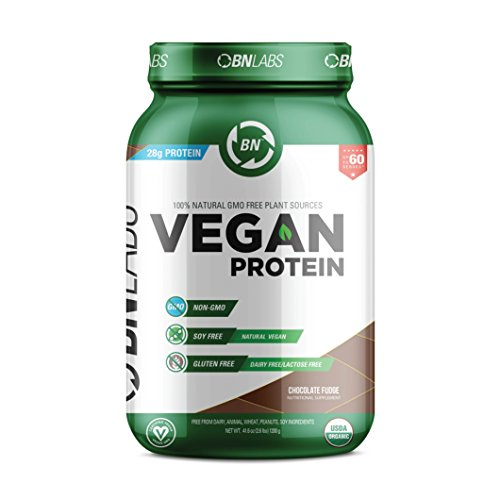 Organic Vegan Protein Powder - 28g Protein, RAW, Certified Organic, NON-GMO, Fully Natural Plant based - Low Carb, NO Sugar - No Dairy, Gluten or Soy - High Protein - USA Made (30 Serving, Chocolate)