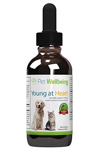 pet-wellbeing-young-at-heart-for-dogs-natural-support-for-your-dog-heart