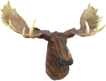 Relatively Amazon.com: North American Moose Head Bust Wall Hanging: Home  HM53