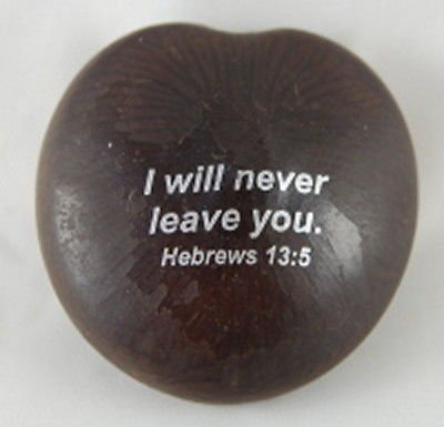 Amazoncom I Will Never Leave You Hebrews 135 Blessed Sea Beans