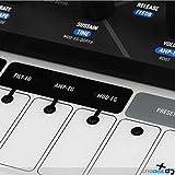 Modal Electronics Craft Synth 2.0 Portable