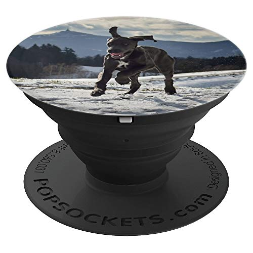 Great Dane Dog Running on Snow Covered Hills Picture - PopSockets Grip and Stand for Phones and Tablets ()