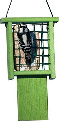 Audubon NAGGPROPSUET Going Green Suet Feeder