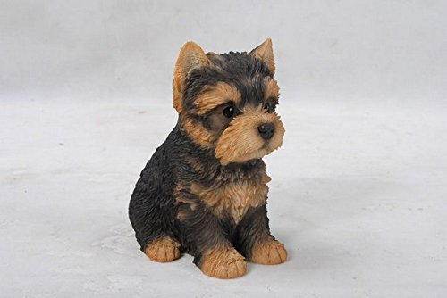 Hi-Line Gift Ltd。チワワ 子犬 ガーデンスタチュー 87771-H B01AS5JSGI Pet Pals Sitting Yorkshire Terrier Puppy Statue Pet Pals Sitting Yorkshire Terrier Puppy Statue