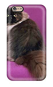 New Arrival Persian Cats YETTRDF14643aIonH Case Cover/ 6 Iphone Case