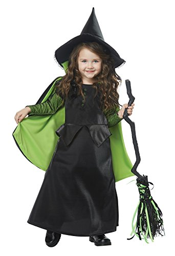Wicked Witch of Oz Toddler