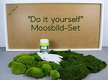 DIY Moosbild 100% Flachmoos, Moosbild selber Machen, Wandbild selber ...