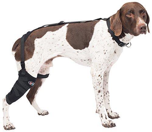Caldera Pet Therapy Tall Stifle Wrap with Gel, Medium/Tall, ()