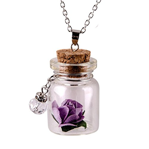 Botrong Glow in the Dark Flower Glass Tiny Wishing Bottle Vial Necklace Pendant Chain (Purple)