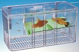 Pen-Plax BT5 Five Plus Breeder & Nursery Fish Tank