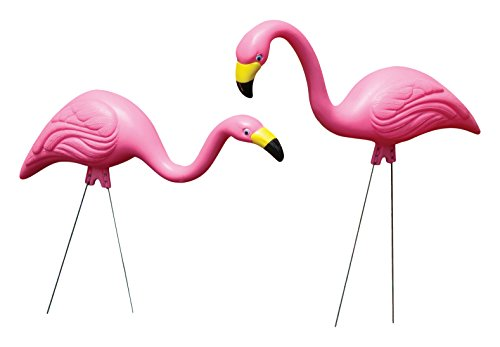 Bloem Pink Flamingo Garden Yard Statue 2-Pack (G2) for sale  Delivered anywhere in USA