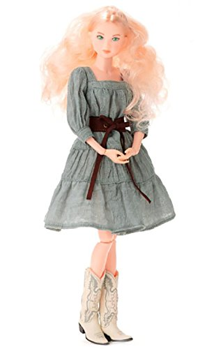 Momoko DOLL The Heather Fairy New From Japan (How To Dress As A Pirate)