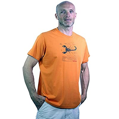 Bear-Grylls-Mens-Scorpion-Short-Sleeve-Tee-by-Craghoppers