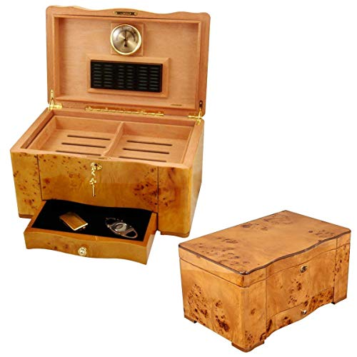 (The Golden - Cigar Humidor - 120 Cigar Capacity - Exotic High Piano Gloss Birdseye Maple Burl Exterior, Spanish Cedar Interior (15 1/8