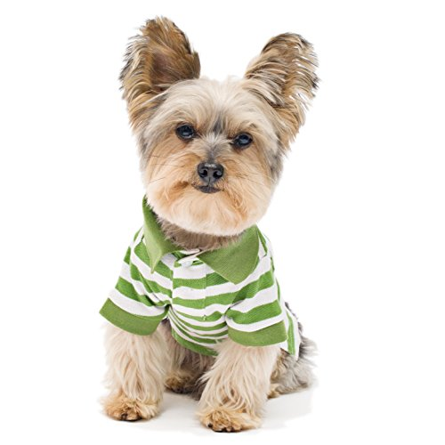 Stinky G Green Stripe Dog Polo Shirt Small #10