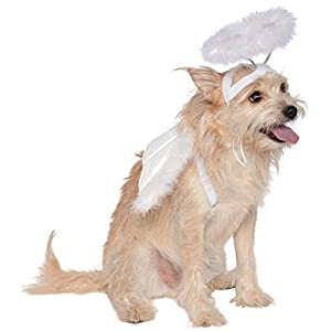 Rubie's Angel Halo and Wings Pet Costume Accessory Set, Medium to Large