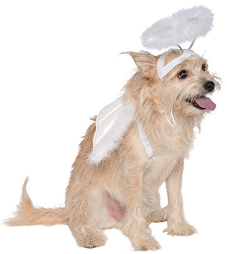 Dog Costumes Angel (Rubies Costume Company Angel Halo and Wings Pet Costume Accessory Set, Medium to Large)