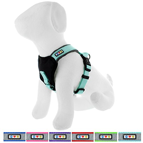 Pawtitas Padded Harness Puppy Harness Dog Harness Reflective Harness Behavioral Harness Training Harness Medium Harness Teal - Reflective Harness