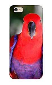 New Fashionable Rightcorner A8cd4212133 Cover Case Specially Made For Iphone 6 Plus(Beautiful Parrot)